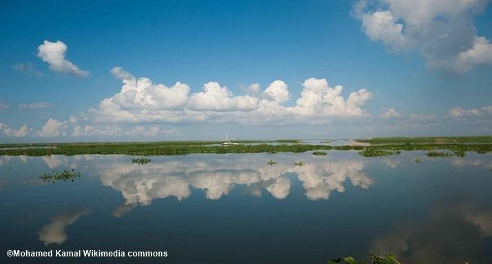 Reserva Natural Ashtum Al Gamil