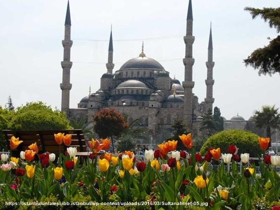 Tulipanes parque Sultanahmet